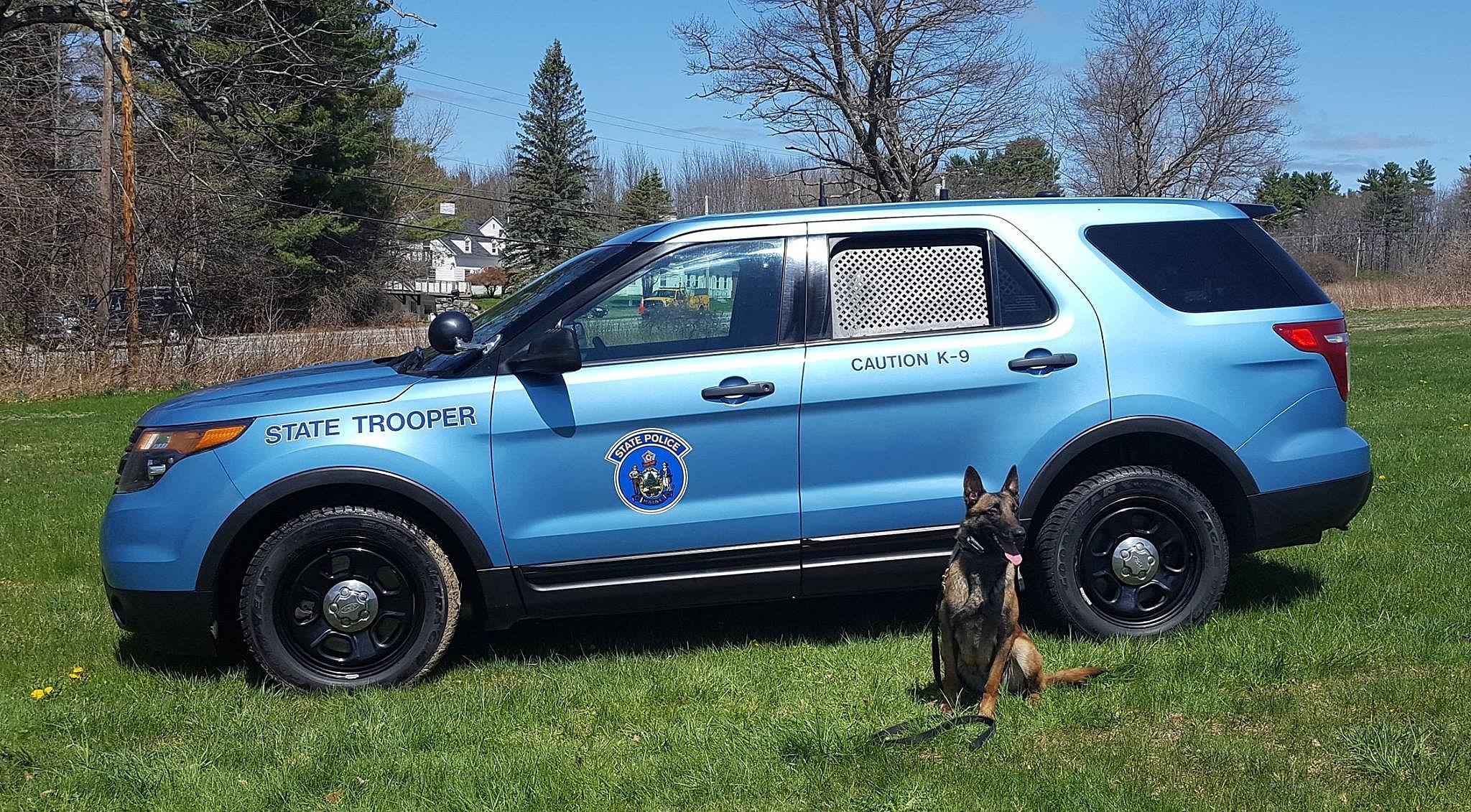 Maine Police K-9 Teams Graduate From Training [PHOTOS]