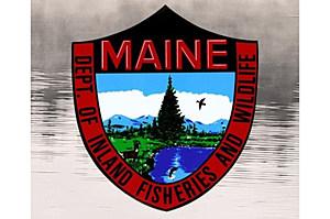 Maine Warden Service