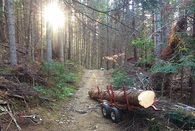 Photo courtesy of the Maine Warden Service